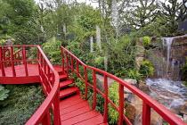 Painted red bridge walkway over ponds, Tillandsia usneoides, Nothofagus antarctica, Araucaria araucana