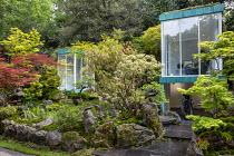 Japanese garden, large rocks, Enkianthus campanulatus, Acer palmatum, Pinus mugo, glazed garden rooms