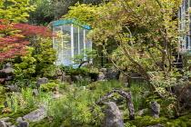 Japanese garden, large rocks, Enkianthus campanulatus, Acer palmatum, Pinus mugo, glazed garden room with outdoor shower, pond