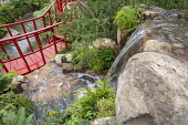 View over waterfall to red painted walkway, Nothofagus antarctica