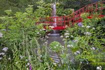 Red bridge walkway, Gunnera manicata, Digitalis purpurea, Valeriana officinalis, Sambucus nigra