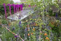 Sorbus aucuparia, greenhouse, Stipa gigantea, Aquilegia chrysantha, geranium, geum, nepeta, salvia, stone-filled gabion wall