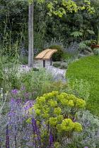 Bench under tree in dry border, nepeta, verbena, euphorbia, achillea, Erysimum 'Bowles' Mauve', trifolium lawn