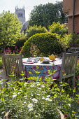 Teapot, cups and cake on table, afternoon tea, tablecloth, Centranthus ruber, view to church, Buxus sempervirens