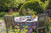 Teapot, cups and cake on table, vase of cut flowers, afternoon tea, tablecloth, Centranthus ruber, Buxus sempervirens