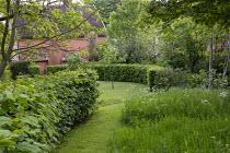 Curved hornbeam hedge, mown grass path, long grass meadow
