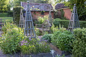 Wooden bench in herb garden, wooden obelisks, Salvia officinalis, rosemary, chives, mint, Centranthus ruber, box hedge enclosure