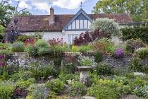 Cottage garden, stone wall, Centranthus ruber, Alchemilla mollis, Leucanthemum vulgare, Lunaria rediviva, geraniums