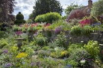 Cottage garden, stone wall, Centranthus ruber, Leucanthemum vulgare, Lunaria rediviva, yew topiary, Gladiolus communis subsp. byzantinus, geraniums, staddle stone