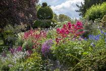 Cottage garden, stone wall, Centranthus ruber, Leucanthemum vulgare, Lunaria rediviva, yew topiary, Gladiolus communis subsp. byzantinus, metal wind sculpture