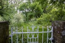 White gate, mown grass path through wild garden