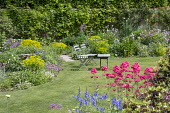 Wooden chairs on lawn, Centranthus ruber, euphorbia, geraniums, Lunaria annua