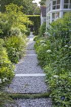 Gravel path, Amelanchier lamarckii, Libertia grandiflora, Allium nigrum, Pittosporum tobira 'Nanum', Euphorbia schillingii