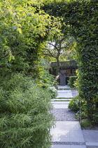 Stone path through clipped bay hedge, Thymus serpyllum rills, view to urn on plinth, Amelanchier lamarckii, Hebe parviflora var. angustifolia, Rodgersia aesculifolia