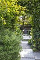 Stone path through clipped bay hedge, Thymus serpyllum rills, view to urn on plinth, Amelanchier lamarckii, Hebe parviflora var. angustifolia