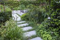 Stepping stones, Erigeron karvinskianus, chairs on patio, Euphorbia characias subsp. characias 'Humpty Dumpty', Pittosporum tobira 'Nanum', limestone paving, camellia