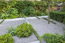 Limestone path across gravel terrace, clipped Taxus baccata, Thymus serpyllum and Erigeron karvinskianus rills, Pittosporum tobira 'Nanum', Hydrangea arborescens 'Annabelle', Alchemilla mollis