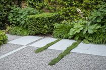 Stone path across gravel terrace, clipped Taxus baccata cube, Thymus serpyllum rills, Hydrangea arborescens 'Annabelle', Hakonechloa macra, Rodgersia aesculifolia, Trachelospermum jasminoides climbing...