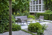 Contemporary chairs and table on limestone patio, white gravel, clipped yew hedges, Thymus serpyllum rills, Pittosporum tobira 'Nanum', Euphorbia characias subsp. characias 'Humpty Dumpty'