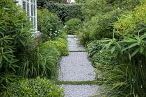 Side passage, gravel path, Libertia grandiflora, Pittosporum tobira 'Nanum', Euphorbia schillingii, Allium nigrum, Hebe parviflora var. angustifolia