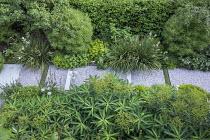 Euphorbia schillingii, gravel path, stone and Soleirolia soleirolii rills, Hebe parviflora var. angustifolia, Libertia grandiflora, pittosporum