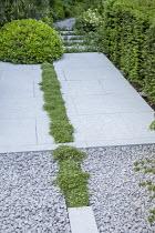 Thymus serpyllum rill through limestone patio, Pittosporum tobira 'Nanum' dome, clipped yew hedge