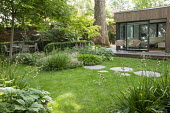 Stepping stone path across lawn, Hakonechloa macra, Saxifraga umbrosa, Libertia grandiflora, Acer palmatum, chairs on terrace by contemporary pavilion, dining table and chairs, Rodgersia podophylla 'B...