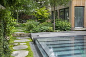 Stepping stone path by contemporary infinity swimming pool, Soleirolia soleirolii, pavilion, Aruncus 'Horatio', Helleborus argutifolius