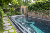 Stepping stone path by contemporary infinity swimming pool, Soleirolia soleirolii, thyme