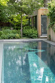 Contemporary swimming pool and pavilion, Aruncus 'Horatio', Helleborus argutifolius, Geranium nodosum 'Clos du Coudray'