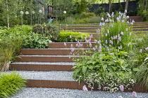 Persicaria bistorta 'Superba', Iris sibirica 'Perry's Blue', Hakonechloa macra, Alchemilla mollis, Erigeron karvinskianus, Cor-Ten steel-edged steps, Pinus mugo, Allium 'Mount Everest'