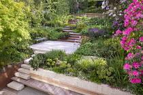 Terraced sloping garden, Cor-Ten steel edged steps, built-in wooden bench, Acer palmatum, rhododendron, Euphorbia x martini, Pinus mugo, Erigeron karvinskianus
