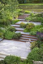 Terraced sloping garden, Cor-Ten steel edged steps, Euphorbia x martini, Pinus mugo, chairs on decking, Geranium 'Rozanne', Persicaria bistorta 'Superba'