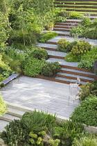 Terraced sloping garden, Cor-Ten steel edged steps, Euphorbia x martini, Pinus mugo, Geranium 'Rozanne', Persicaria bistorta 'Superba'