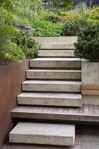 Steps leading up terraced sloping garden, built-in wooden bench, Pinus mugo, purple metal bench