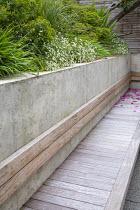 Built-in wooden bench, hakonechloa macra, Euphorbia x martini, Erigeron karvinskianua