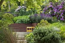 Salvia nemorosa 'Caradonna', rhododendron, Allium 'Mount Everest', Euphorbia × martini, Cor-Ten steel steps, yellow bench, Alchemilla mollis, Pinus mugo