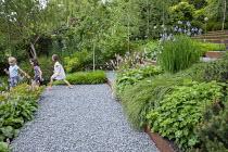 Persicaria bistorta 'Superba', Iris sibirica 'Perry's Blue', Betula pendula 'Swiss Glory', Geranium 'Rozanne', Hakonechloa macra, gravel path