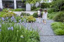 Girls walking through sloping garden, Persicaria bistorta 'Superba', Iris sibirica 'Perry's Blue', Euphorbia x martini, Pinus mugo, Hakonechloa macra