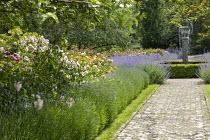 Stone path leading to circular water fountain in rose garden, Nepeta x faassenii, Lavandula angustifolia 'Loddon Blue'
