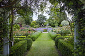 Framed view along grass path to circular water fountain in rose garden, Nepeta x faassenii, Lavandula angustifolia 'Loddon Blue' and low box hedge edging