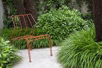 Orange metal chair, Hakonechloa macra, Pittosporum tobira 'Nanum'
