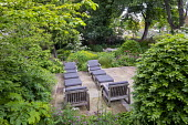Contemporary chairs with cushions on stone terrace, large clipped Fagus sylvatica domes, astrantia, Hydrangea arborescens 'Annabelle', Hydrangea quercifolia, Euphorbia x pasteurii, Rosmarinus officina...