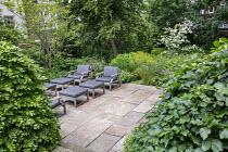 Contemporary chairs with cushions on stone terrace, large clipped Fagus sylvatica domes, astrantia, Hydrangea arborescens 'Annabelle', Euphorbia x pasteurii, Rosmarinus officinalis, Cornus kousa
