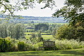 Wooden bench overlooking countryside, drift of Anthriscus sylvestris
