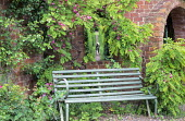 Bench in corner, view through window in brick wall to dog walking along path leading down hedge-lined avenue, Robinia hispida, garden 'rooms'