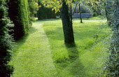 Mown lawn, long grass triangle, bench