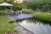 Table, chairs and umbrella on decking by natural swimming pond, roses