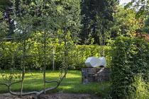 U-trained espalier fruit tree, hornbeam hedge, sculpture on plinth