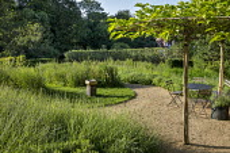Gravel path around bird bath on lawn, lavender, Centaurea nigra, umbrella trained mulberry trees